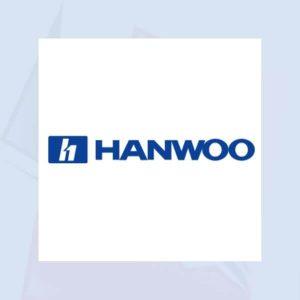 Punteros y repuestos martillos hidráulicos Hanwoo