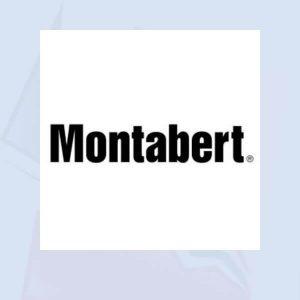Punteros y repuestos martillos hidráulicos Montabert